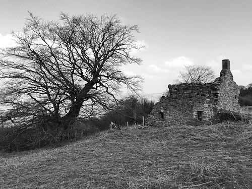 Little Pen Y Craig Farm - Llanfoist (Conphused)