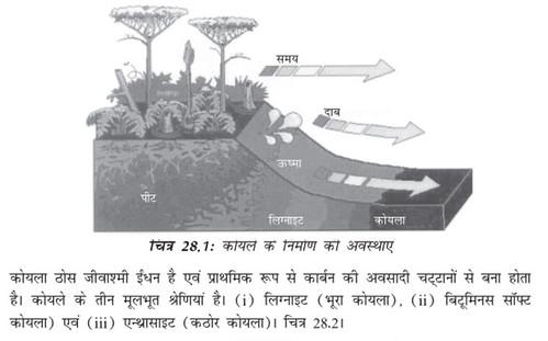 कोयले के निर्माण की अवस्थाएँ