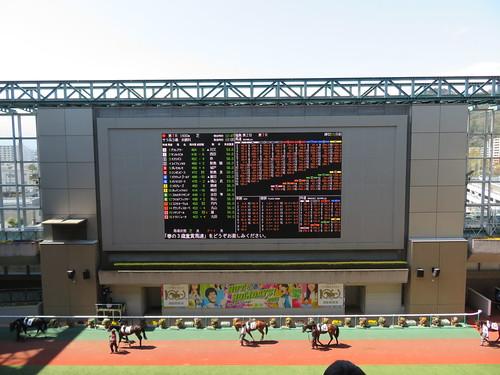 福島競馬場のパドックのモニター