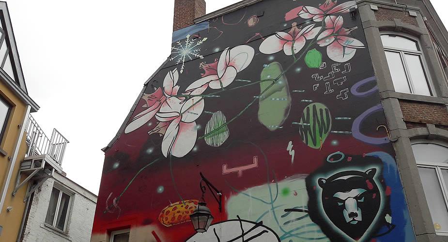 Street art in Namen (Namur), België | Mooistestedentrips.nl