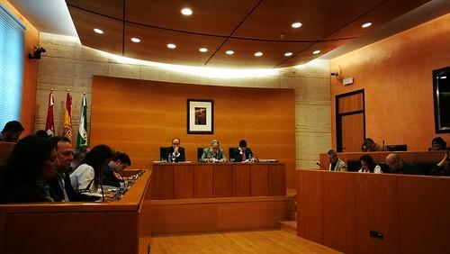 Pleno ordinario del mes de marzo ayuntamiento