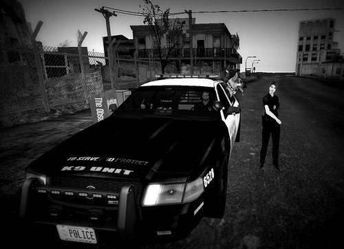 Officer Wardark and Co -CD