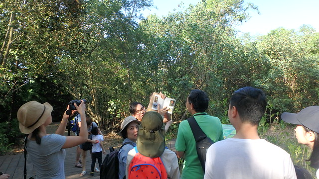Pasir  tour with the Naked Hermit Crabs, Mar 2018