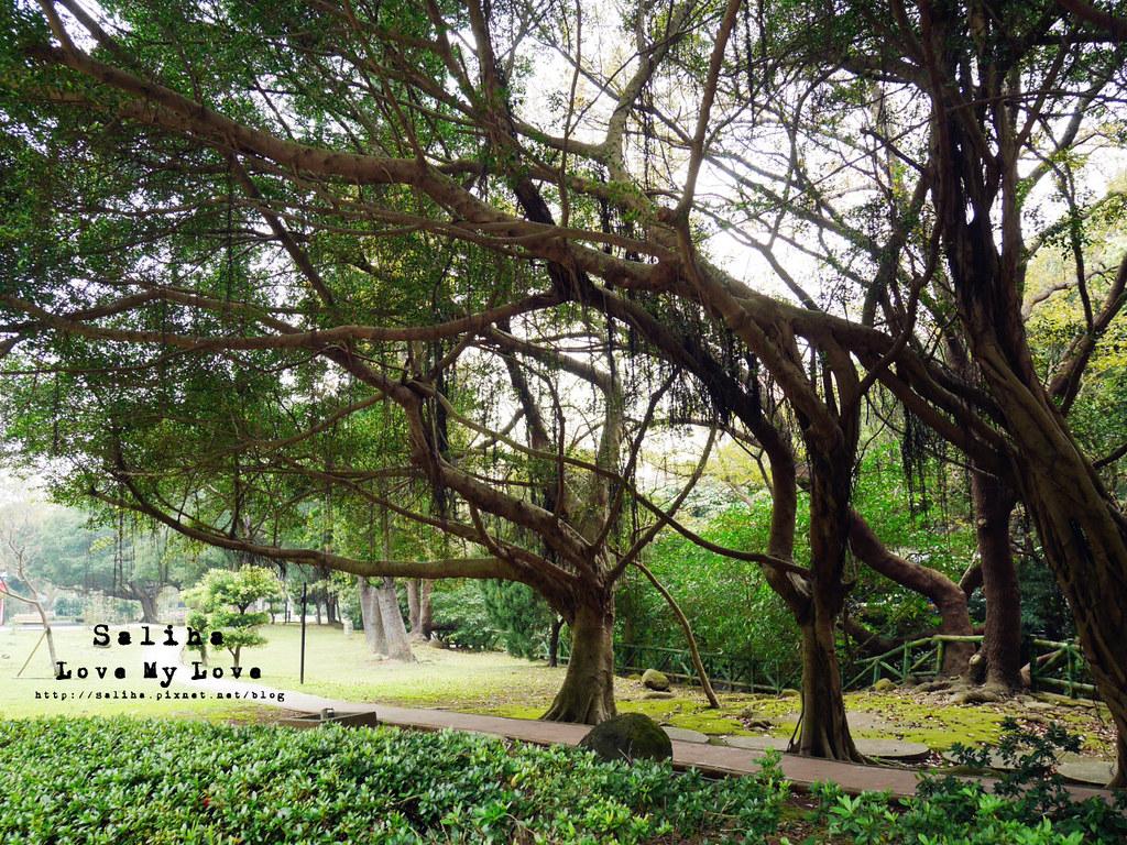 台北士林區天母一日遊行程推薦天母公園 (11)