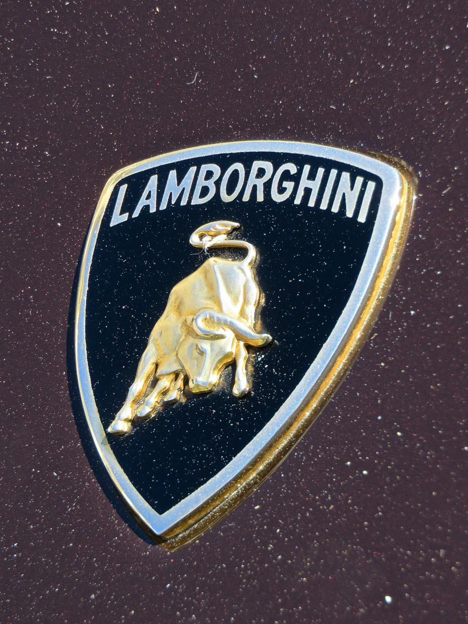 Brown Lamborghini Diablo 6.0 Amelia RM 9