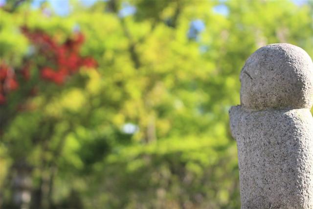 houtokuji-gosyuin04046