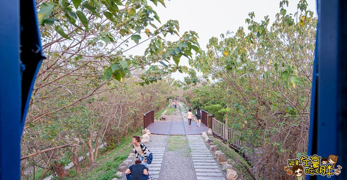 舊鐵橋(屏東端)花海-31