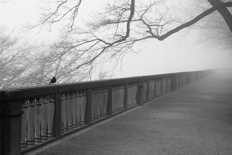 Lost in the fog, Heidelberg
