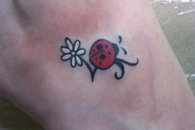 ladybug collection 2