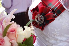 Bridal Tartan
