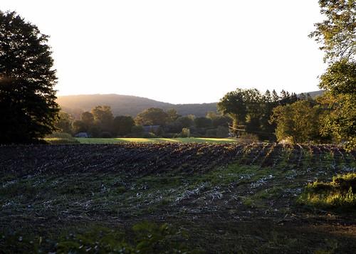sunrise landscape cornfield raw 2006 canonef2470mmf28lusm canoneos5d