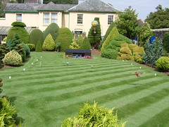 backyard, shrub, garden, grass, plant, yard, estate, landscaping, hedge, lawn,