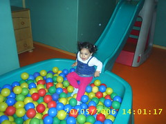 play(1.0), ball pit(1.0), toy(1.0),