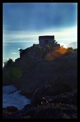 Uxmal looking from the Magician - 1985