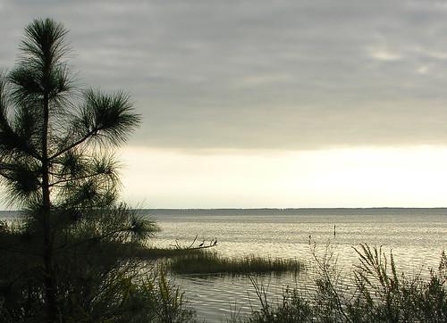 sky usa gulfofmexico water birds cormorants florida scenic fallbreak capesanblas portstjoe stjosephbay