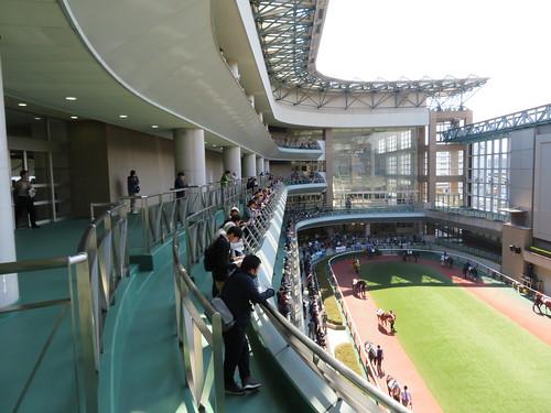 福島競馬場の4階バルコニー
