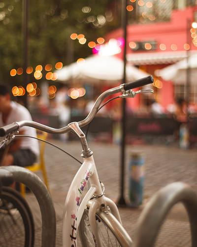 The flowery bike