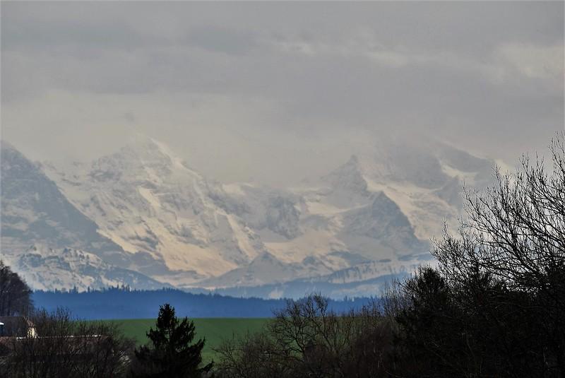 Alps 03.04 (5)