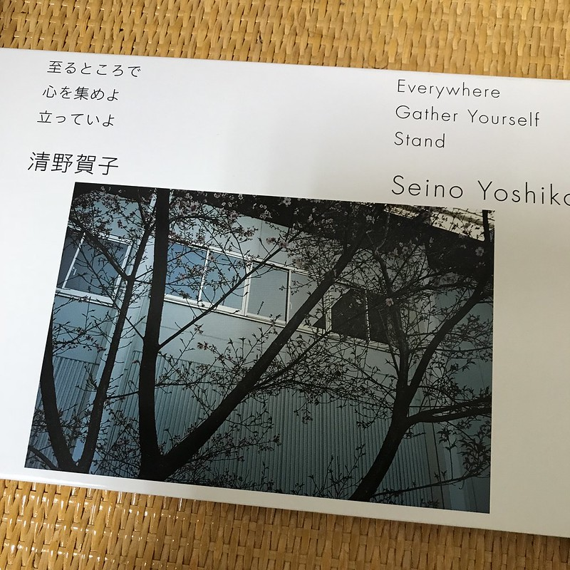 "Seino Yoshiko ""EverywhereGather Yourself Stand"""
