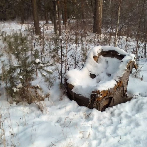 chair_in_the_forest