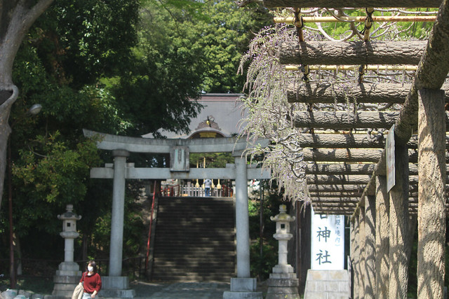 haijimahiyoshi-gosyuin04066