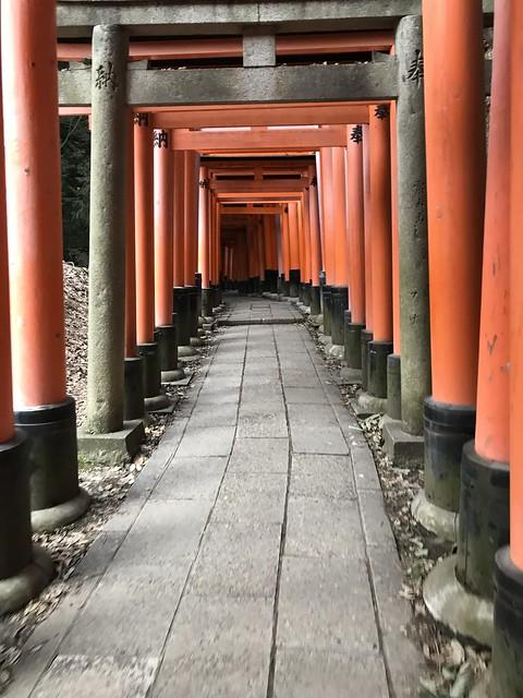 Never-ending torii gates