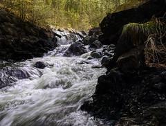 Crna reka, Podbukovi , Valjevo