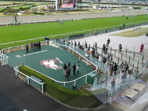 福島競馬場のウィナーズサークルを3階から眺める