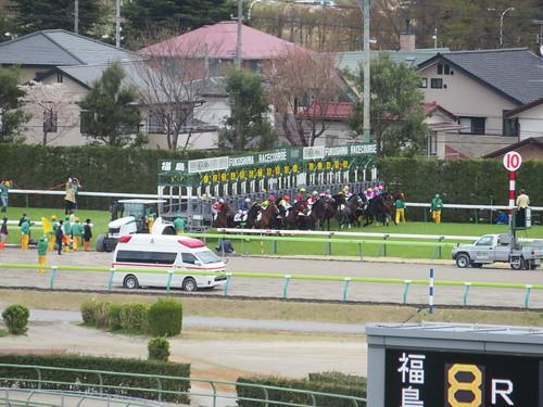 福島競馬場の芝2600mスタート地点