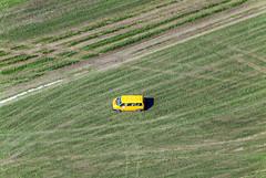 Yellow Car Series