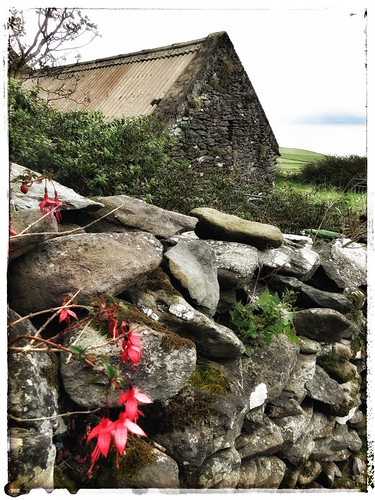Famine House on the Dingle Peninsula in Ireland, run through the photo app Snapseed