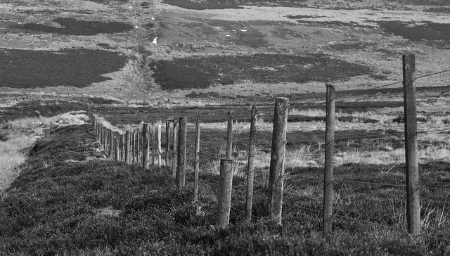 moorland fence, Canon EOS 500D, Canon EF-S 55-250mm f/4-5.6 IS