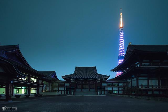 她說旅途若是卷底片 | 東京,72時 | 24