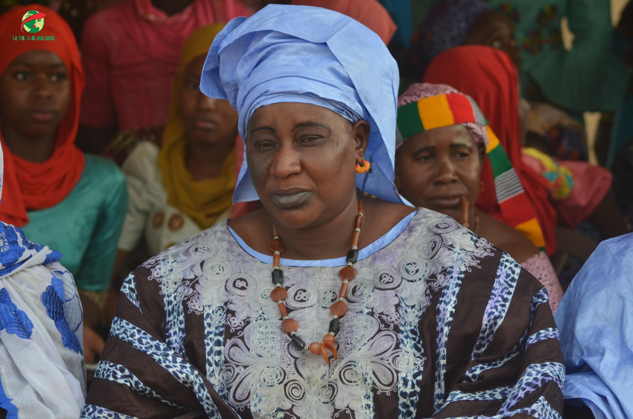 Journées Culturelles Waoundé, Parrain Bakary Biné Camara, Images de laviesenegalaise (30)