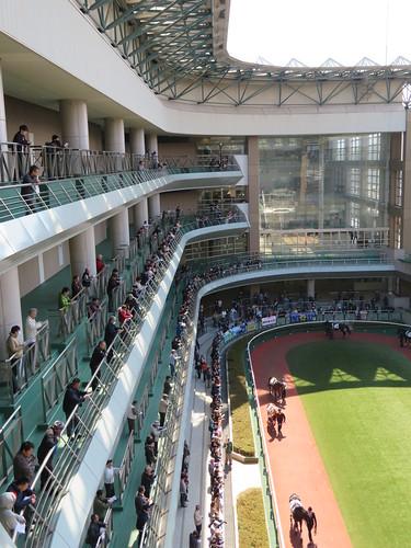福島競馬場のパドックを5階から見下ろす