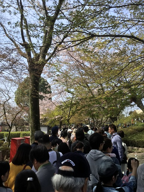 犬山城天守閣登城待ちの行列 IMG_2687