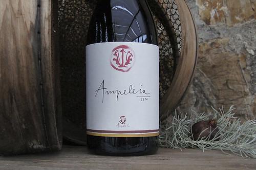 I vini di Ampeleia