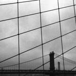 new york 1Negatif183