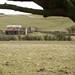Castlerigg Pit, Moresby