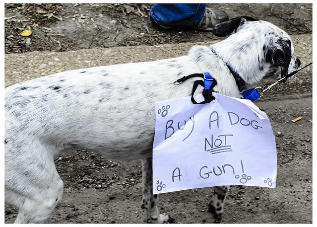 Buy A Dog Not A Gun