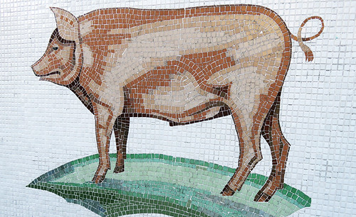 Mosaic of a pig decorates a wall in Galway, Ireland