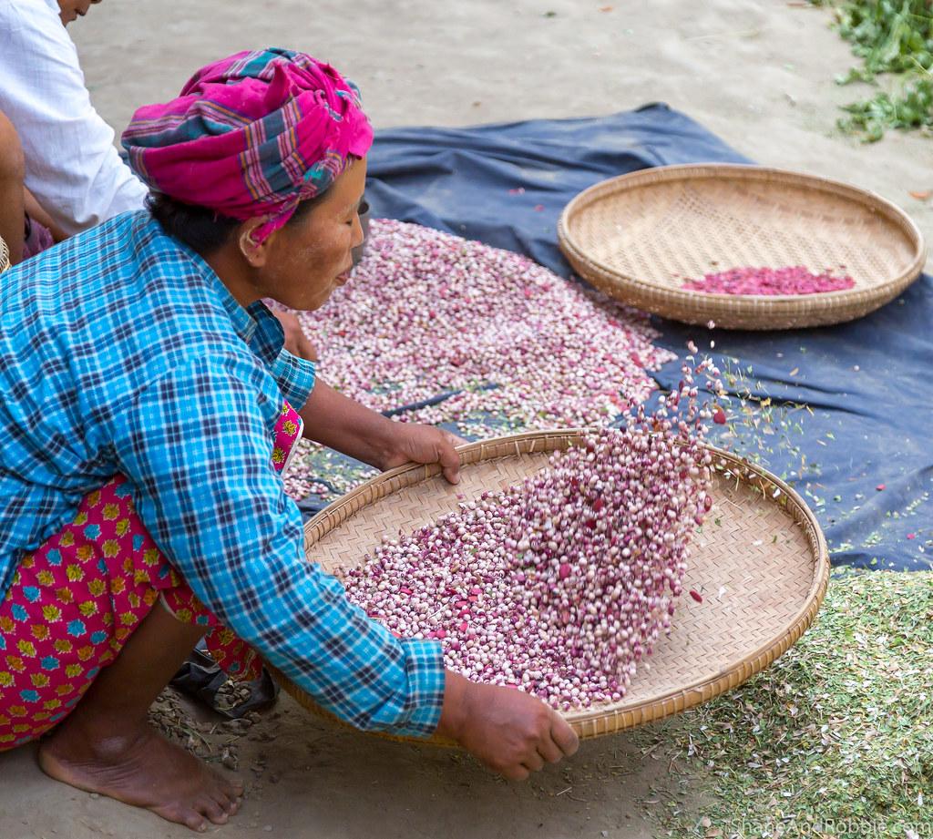 Myanmar-20180323-1190