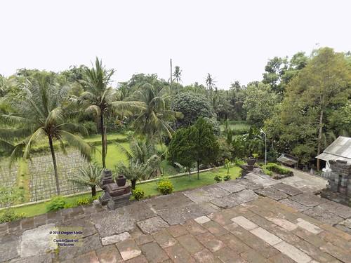 asia asean seasia indonesia indonesian java javanese eastjava jawatimur blitar penataran tree garden temple canadagood 2017 thisdecade color colour hindu archaeology