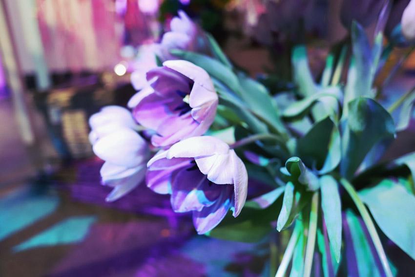 jarvenpaan-kukkatalo-kukka-asetelma