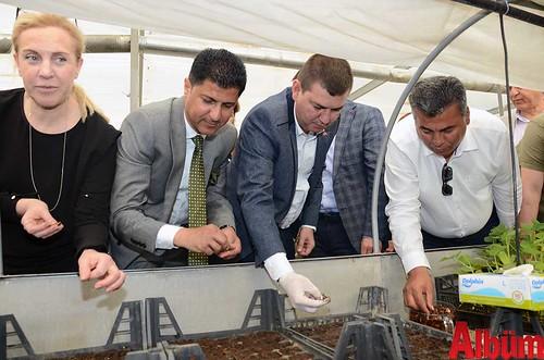 Alanya Kent Konseyi Başkanı Nurhan Özcan su kabağı dikimi