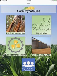 mycotoxin_interface_vert