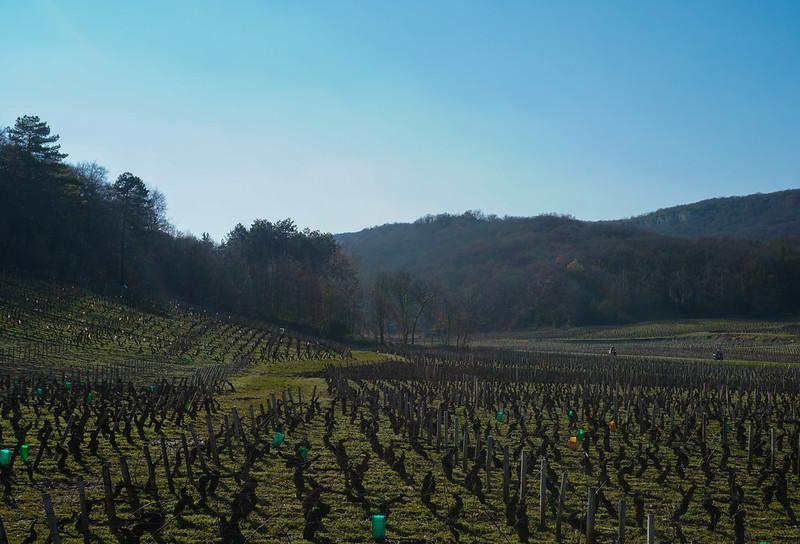 Bourgogne-27-2.jpg