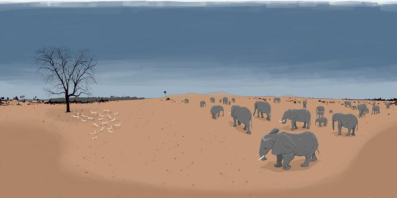 Elephants, lions, and a doomed zebra
