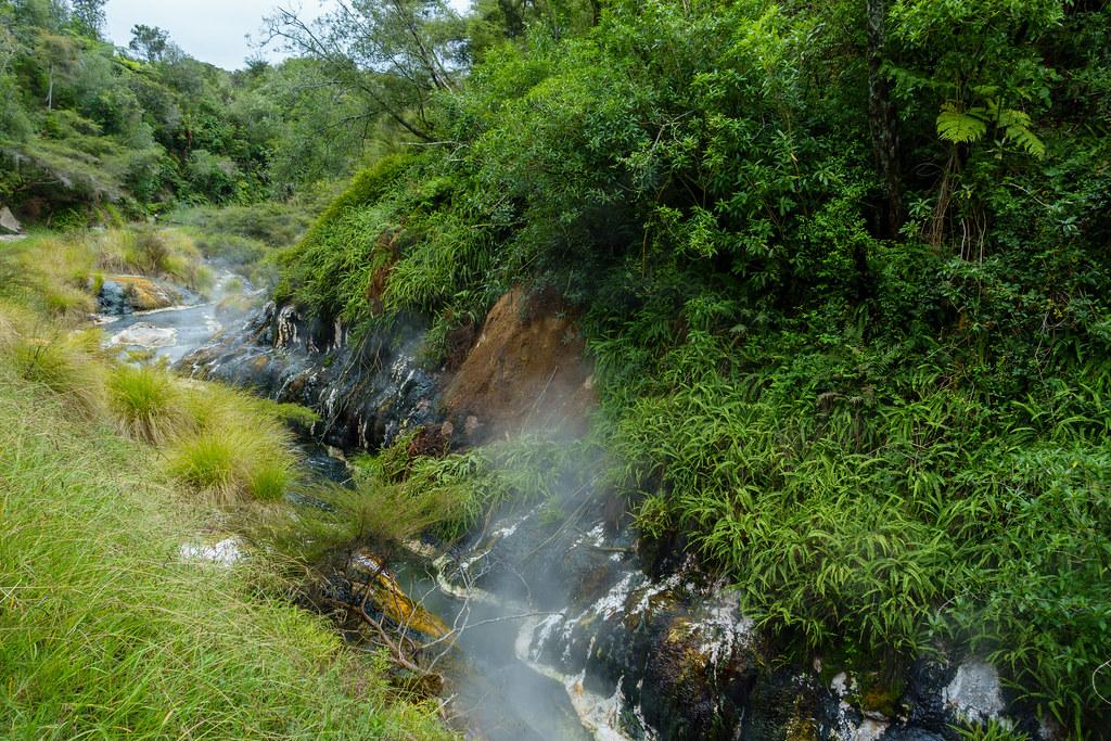 Waimangu-03760