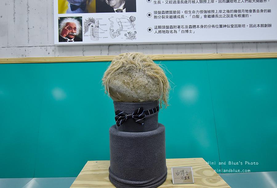 台灣手套博物館-手套工場.彰化景點14